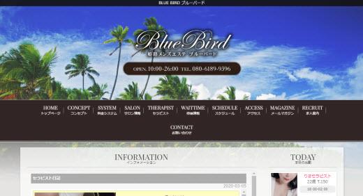 BLUE BIRD ブルーバード
